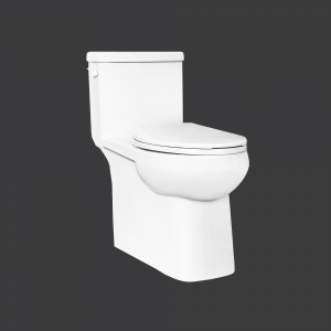 Cila One Piece Toilet Concealed Elongated Plus Height Bowl