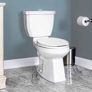Carson Two Piece Toilet Dual Flush Round Front Bowl