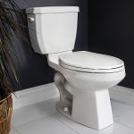 Cato Two Piece Toilet Elongated Bowl