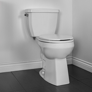 Caven Two Piece Toilet Round Front Plus Height Bowl