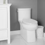 Hillsborough One Piece Toilet Elongated Plus Height Bowl