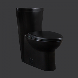 Miller One Piece Toilet Elongated Bowl